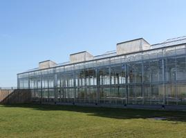 033 glasshouses